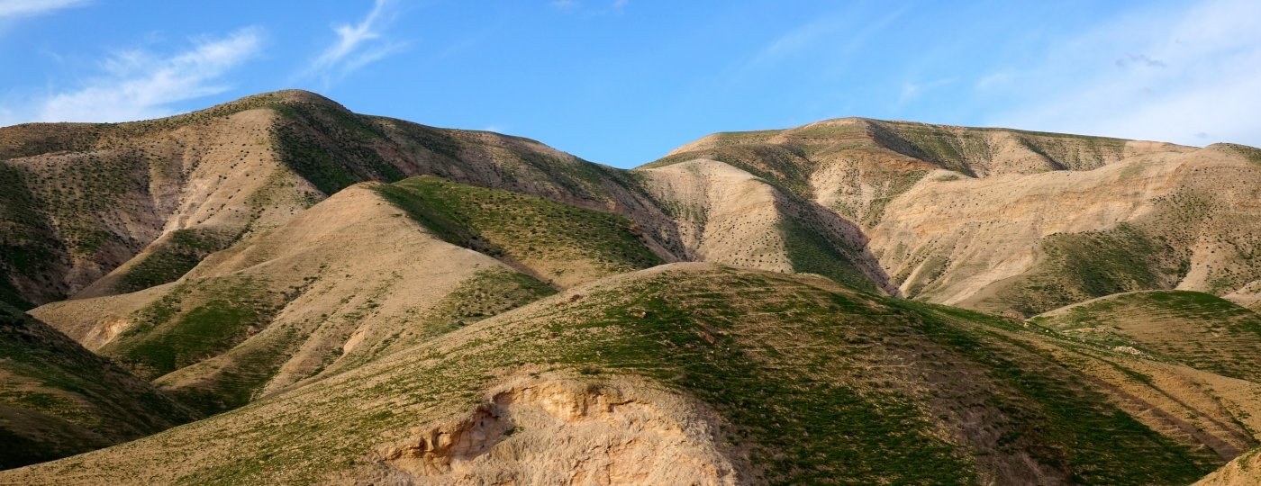 Judah: David's Training Ground of Faith